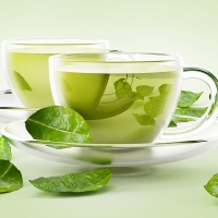 Pure High Quality Green Tea Extract