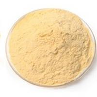 Freeze Dried Papaya Juice Powder