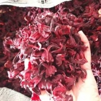High Quality Dried Hibiscus Flower