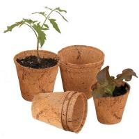 Coir Pot