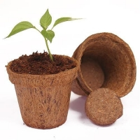 Coir Pot Plant Tree