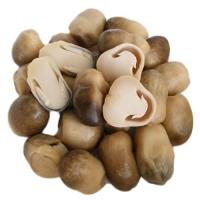 Canned Brine Mushroom