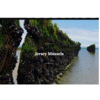 Jersey Mussels