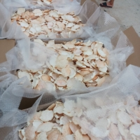 High Quality Crab Shell In Viet Nam