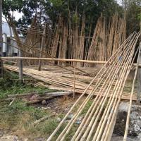 Bamboo Material, Bamboo Pole