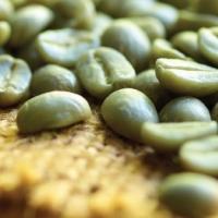 Specialty Green Arabica Coffee
