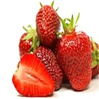 Strawberry Juice Concentrate