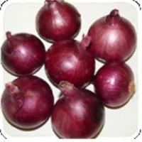 Banglore Rose Onion