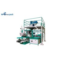 20~50 KG Bag Weighing Machine (Fully Automatic)