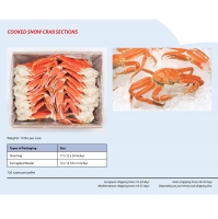 Cooked Snow Crab Sections