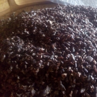 title='Cacao Nibs'