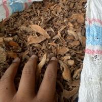 Dried Tumeric