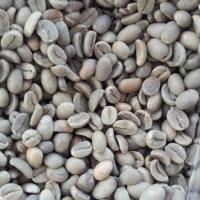 Arabica Coffee Commercial Grade