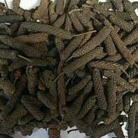 Long Pepper Indonesia Origin