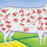 Highest Quality HALAL Mutton