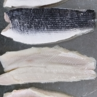 Frozen Snakehead Fish