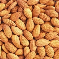 Best Quality Almonds