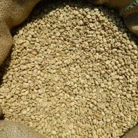 Arabica, Robusta Coffee Beans, Raw or Roasted