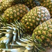 Fresh & Frozen Pineapples