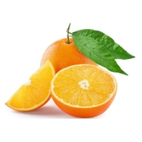 Bulk Fresh Oranges