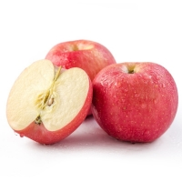 High Quality Wholesale Royal Gala Fresh Apple