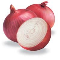 Onion Oleoresin