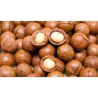 Quality Mongongo Nuts