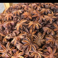 Star Aniseed/Autumn Star Aniseed