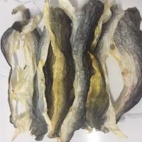 Vietnam Supplier Dried Fish Skin Collagen