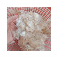 Dried Fish Scale Collagen