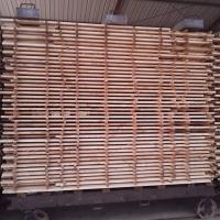 Kiln Dried Pine Planks