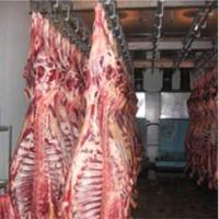 Frozen Buffalo Beef Meat