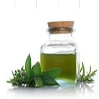 Peppermint Oil IP