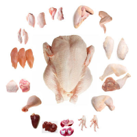 Frozen Poultry Meat