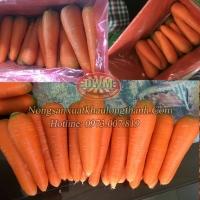 Frozen Or Fresh Carrot