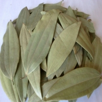 Dry Bay Leaf Available