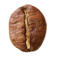Robusta Coffee