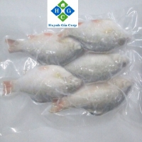 Frozen Red Puti (River bard) Fish