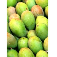 Raw Mango Pulp