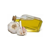 Garlic Essential Oil