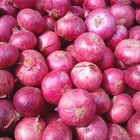 title='Onion'