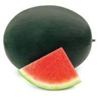 Chubbiness Seedless Watermelon Seeds