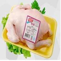 Frozen Packed Chicken