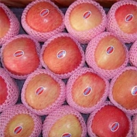 Fresh Fuji Organic Apples