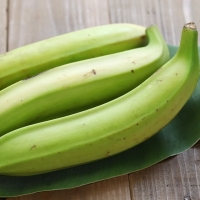 Green Fresh Plantain