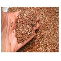High Quality Flax Seeds