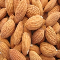 Almond Kernels, Almond Nuts And Without Shell
