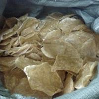 Dried Catfish Maw Or Pangasius Fish Maw