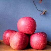 Red Organic Fuji Apple