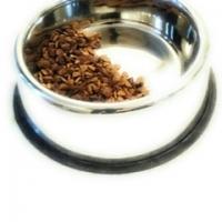 Tilted Pet Bowls